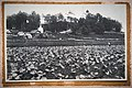 Вид на монастырь 1920е годы. .jpg