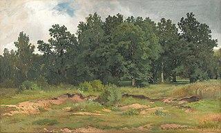 Oak Wood in a Gray Day
