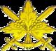 Загальновійськова емблема (2007).png