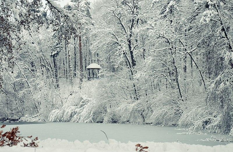 Зимовий став, дендропарк Олександрія (Біла Церква).