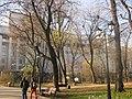 Маріїнський парк Київ.jpg