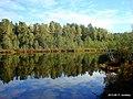 Озеро Захарничи 1 - panoramio.jpg