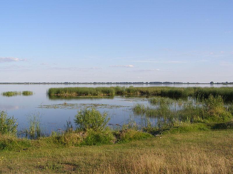 Урочище «Озеро Тур», вигляд з дамби (Ратнівський район Волинської області). Автор фото — Борис Бабійчук, ліцензія CC-BY-SA-4.0