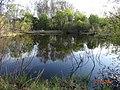 Озеро за водозабором - panoramio.jpg