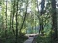 Парк бывшей виллы Рено в комарово.jpg