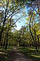 Парк партизанської слави 14.JPG