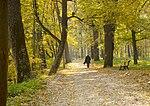Прогулянки в осінньому парку.jpg
