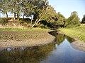 Річка Говтва (Заказник Брідок).jpg