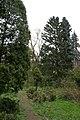 Сирецький дендрологічний парк 01.jpg