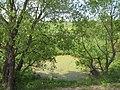 Слив с озера - panoramio.jpg