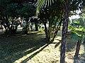 Тени - panoramio (4).jpg