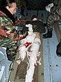 Эвакуация раненых, Чечня, 2010 год.JPG
