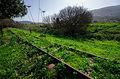 רכבת העמק סמוך לצומת העמקים 2.jpg