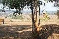 อุทยานแห่งชาติทุ่งแสลงหลวง Thung Salaeng Luang National Park - panoramio - Thaweesak Churasri (6).jpg
