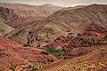 ⵉⴷⵓⵔⴰⵔⵏⵓⴰⵟⵍⴰⵙ, Morocco (45440764605).jpg