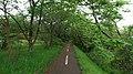 サイクリングロード - panoramio (6).jpg