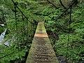 唐松谷登山道の吊り橋 2014-08-08 - the Suspension bridge of Karamatsu-dani Path - panoramio.jpg