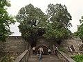 壶天阁 - Hutian Pavilion - 2012.06 - panoramio.jpg