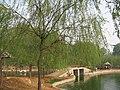 枫岭人工湖 - panoramio.jpg