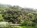桂林市冠岩景区景色 - panoramio (26).jpg