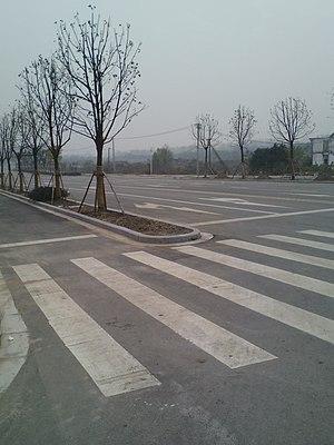 Jiangxin Island - Image: 江心洲道路