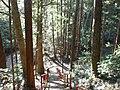 飛竜神社への道 - panoramio.jpg