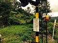 駅跡に隣接する若菜駅前通り踏切 2014-08-15 07-04.jpg