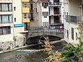 005 Pont del Ritort (Camprodon).JPG