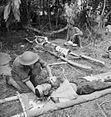 013880 Wounded Japanese treated after final attack Gona.jpg