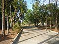 06949jfSanto Rosario Parish Church Bahay Pastol San Ildefonso Bulacanfvf 12.jpg