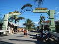 0806jfLandscapes Welcome Vegetables Roads Binagbag Angat Bulacanfvf 24.JPG
