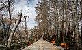 1399010914573774520006334 پارک های تهران در روزهای کرونایی.jpg