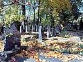 181012 Muslim cemetery (Tatar) Powązki - 10.jpg