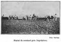 1910 maşini de semănat.PNG