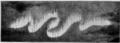 1911 Britannica - Aurora Polaris - Auroral bands.png