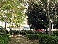 197 Parc del Pla de l'Alemany.jpg