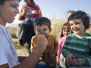 "Bird ringing - Pupils watch a bird ringing activity during ""A day at the wetland"", organised by environmental group WWF. The same individual, an adult Fringilla coelebs, had been caught again in the same area last year in Lesvos, Greece"