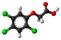 2,4,5-Trichlorophenoxyacetic-acid-3D-balls.png