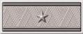 2-14. Отставной морской врач, статский советник, 1902–1904 гг.png