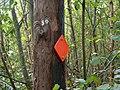 20060909 hokasen elljusspar markering.jpg