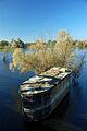 2010-10-10-oderpruch-pl-by-RalfR-11.jpg
