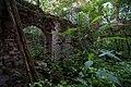 20120714 - Усадьба Сосновец. Руины дома Лихачевых.jpg