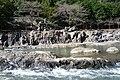 20131017 17 Hozugawa-Kudari (10563165914).jpg