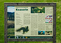 20140712-Koaserin-055.jpg