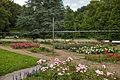 20140901Deutsch-Französischer Garten Saarbrücken Rosengarten.jpg