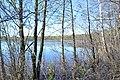 2015 29 Национальный парк Мещёрский - озеро Ютница.jpg