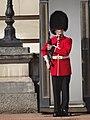 2017 Buckingham Palace 003.jpg