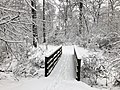 2018-03-21 12 10 53 View along a snow-covered walking path as it crosses a bridge in the Franklin Glen section of Chantilly, Fairfax County, Virginia.jpg