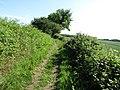 2019-06-06 'The Green' Paston Way footpath, Knapton (2).JPG
