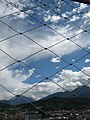 2678 - Innsbruck schauen vom Stadtturm.JPG
